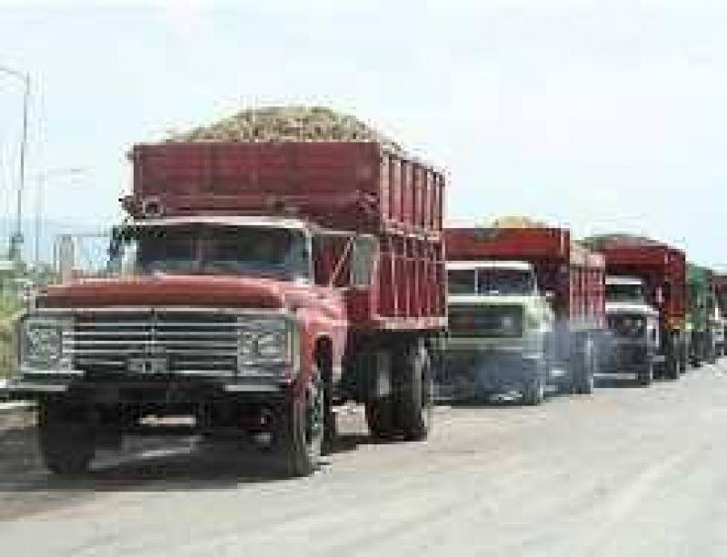 Hoy, 24 bodegas comienzan a elaborar las uvas del Estado
