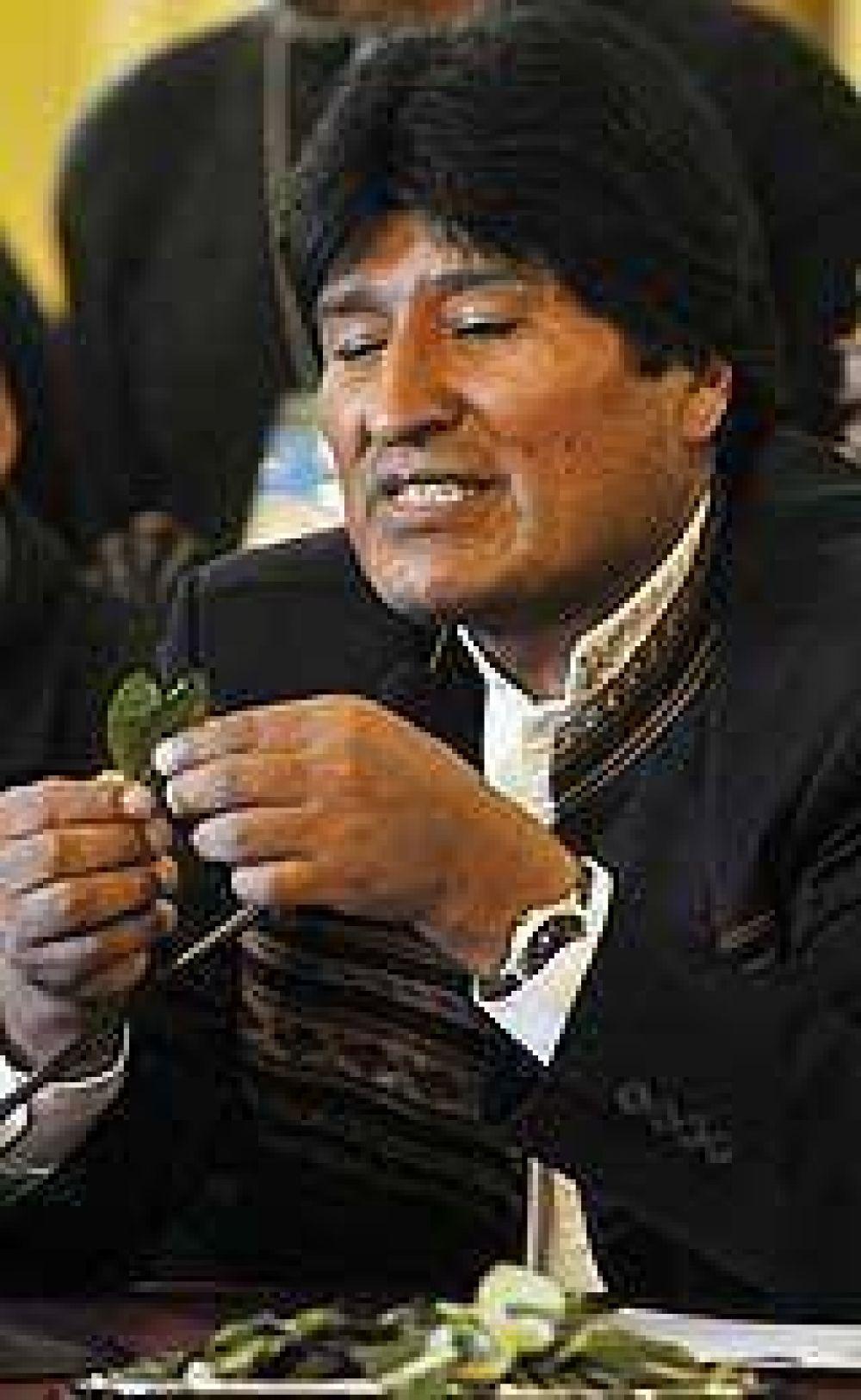 Evo pidió despenalizar la coca masticando hoja ante la ONU
