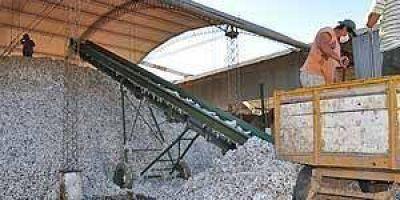 Formosa recibirá fondos de la nación para sector algodonero