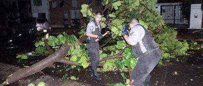 La tormenta causó severos daños en toda la región