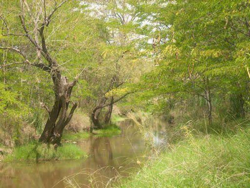 La canalización en el arroyo Balta se vería impedida por la Ley Nacional 25.743