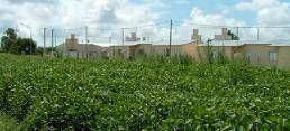 Para proteger a vecinos prohiben fumigar con agroquímicos