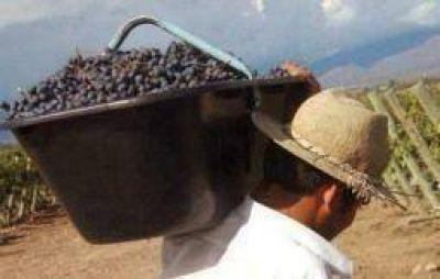 Según CARPA, a la crísis olivícola se suma ahora la vitivinícola