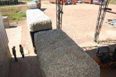 Gobierno y cooperativas buscan centralizar el desmote de algodón para la próxima campaña