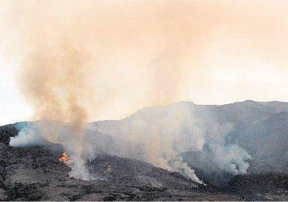 Sigue la lucha contra el fuego en el Parque Lanín