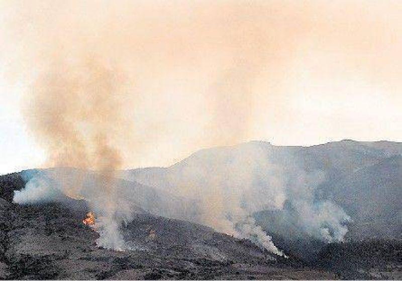 Sigue la lucha contra el fuego en el Parque Lan�n