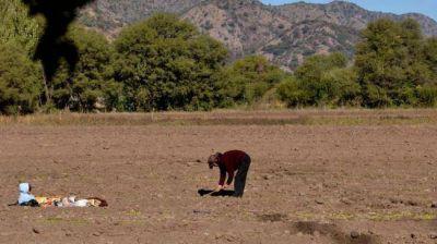Inquietud en San Marcos Sierras por el uso de agroquímicos