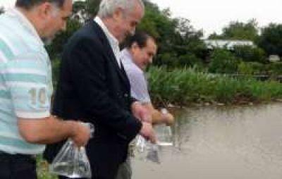 Dengue: Comenzó la siembra de peces en lagunas de Fontana