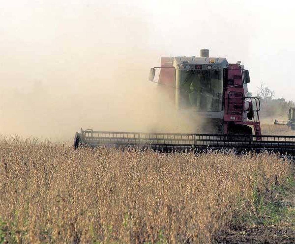 Quebrantos: Comienza la cosecha