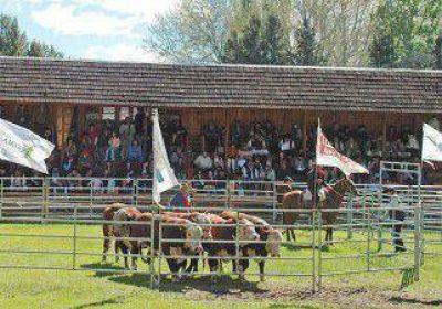 1ª Exposición de Bovinos del Neuquén