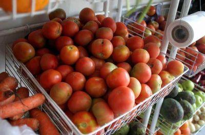 El tomate por las nubes:se paga hasta $25 el kilo