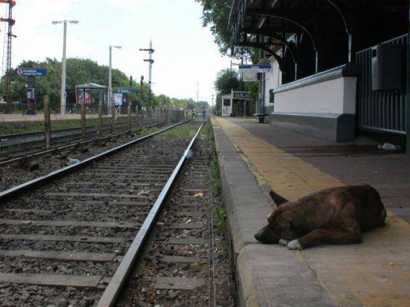 El paro se not� por la falta de trenes y por la adhesi�n de los docentes a la huelga general