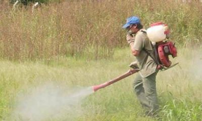 La Defensoría insiste con la prohibición de los agroquímicos