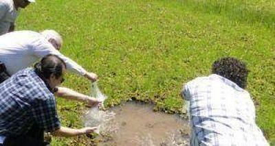 Dengue: se concretó una nueva siembra de peces en Puerto Vilelas
