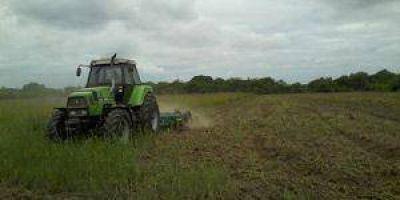 Belgrano: El Municipio brinda asistencia técnica al pequeño productor