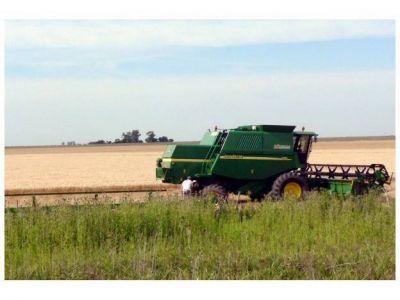 Anuncian una cosecha récord en la provincia