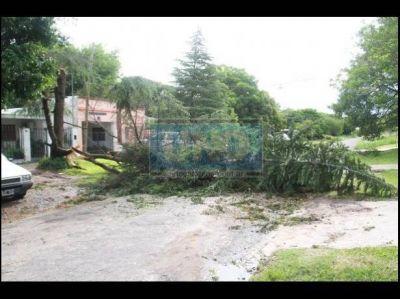 Paraná en emergencia, tras el temporal