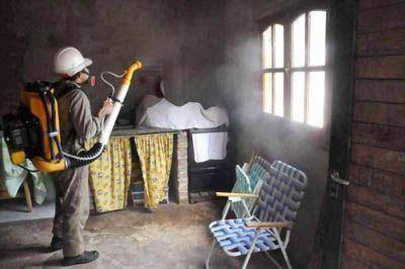 No hay alerta por dengue en Mar del Plata pero recomiendan extremar medidas higiénico sanitarias