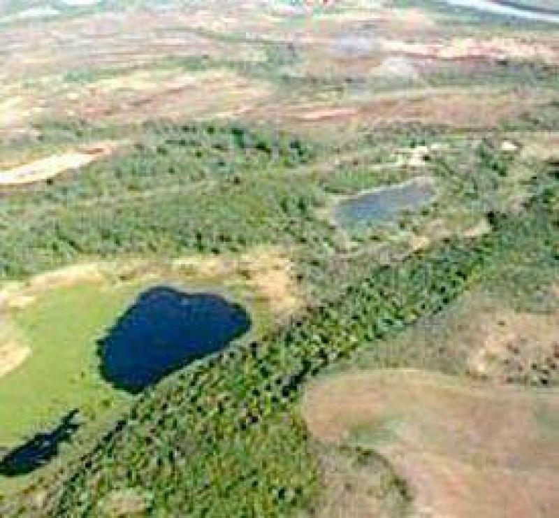 Investigan la apropiación de 100.000 hectáreas de tierras fiscales.