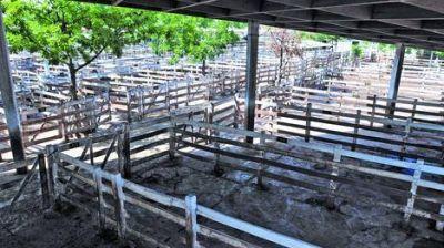 El Gobierno intimó a la Rural a que deje el predio en 30 días