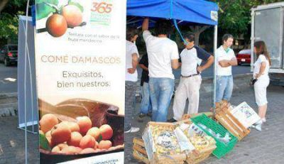 Fruta para Todos comercializó 400 toneladas de frutas