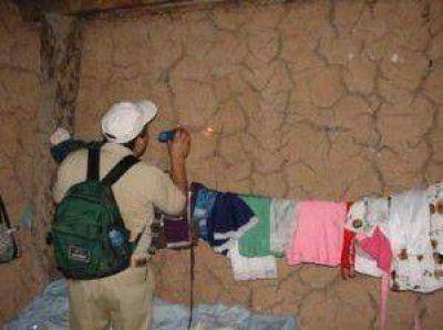 Chagas: Casi cuatro mil viviendas tratadas para proteger a m�s de 16 mil habitantes