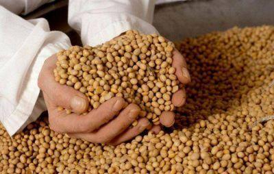 La Pampa: el fondo de la soja apenas creció el uno por ciento en 2012