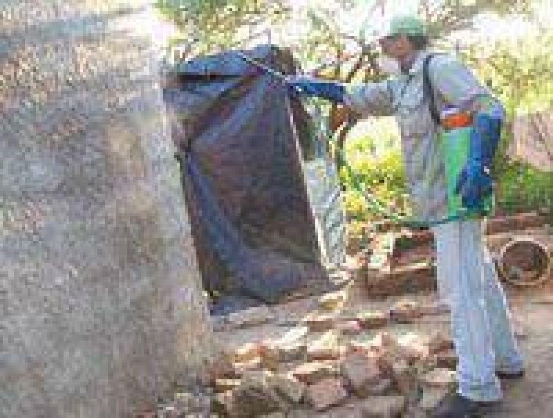Todos contra el dengue en San Pedro