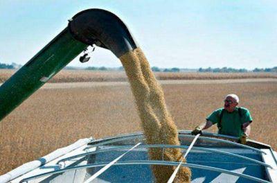 La soja está en valores máximos y el fisco podría recaudar US$8.500 millones