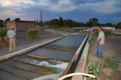 250 personas con diarrea por una bacteria en el agua
