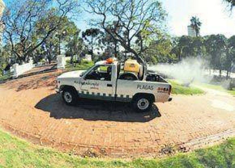 Crecen los infectados con dengue en Capital y GBA