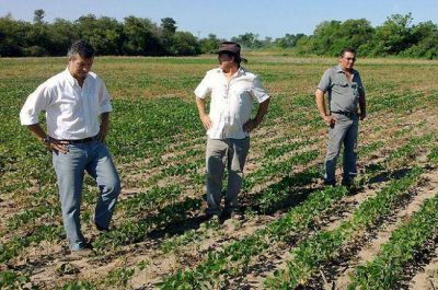 Productores de La Tigra reclamaron a Aguilar una Ley de Seguro Agrícola