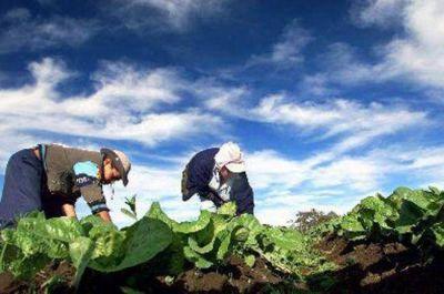 Unos 50 productores recibirán reembolsos del PROSAP por $ 2 millones