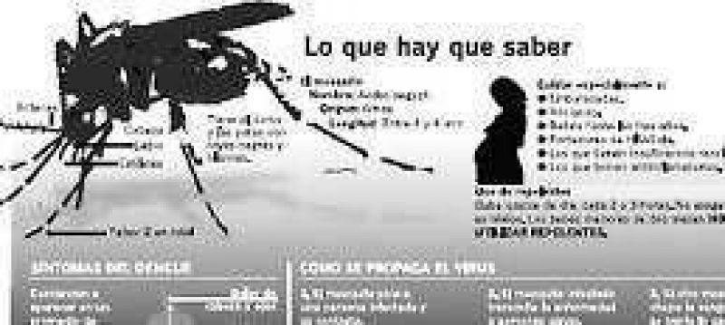 Dengue: se disparan las consultas y en Santa Fe ya estudian 200 casos
