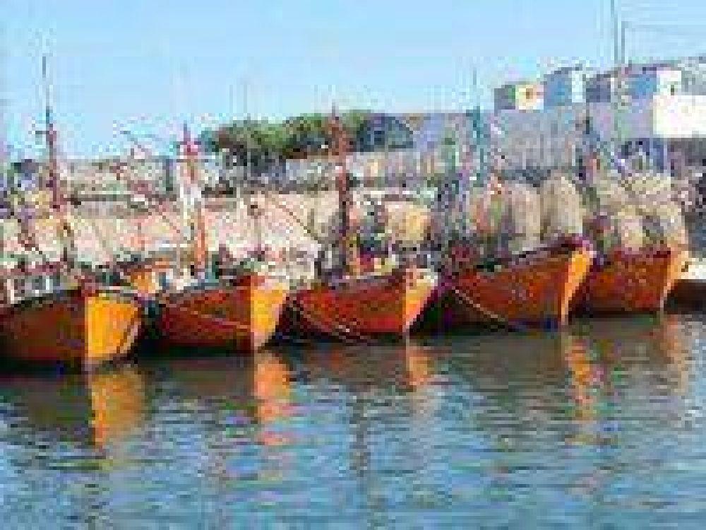 """Novero aseguró que la situación en el Puerto """"es muy grave"""""""