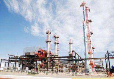 Pereyra: �Petrolera Argentina y Renesa est�n en una situaci�n l�mite�