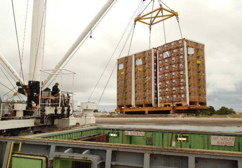 Sin acuerdo entre portuarios y Patagonia Norte