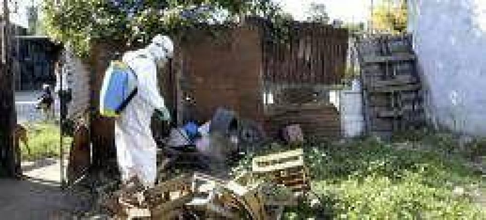 Admiten que Rosario todavía no llegó al pico de enfermos de dengue