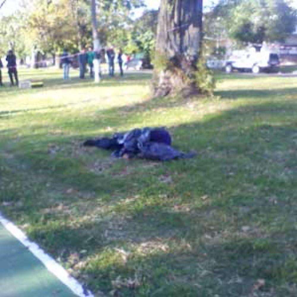 Hallaron a joven de 19 años con un tiro en el pecho cuerpo estudiantes 122 y 67