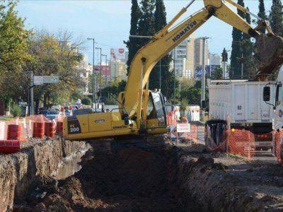 Removerán 11 árboles de la avenida Reyes Católicos
