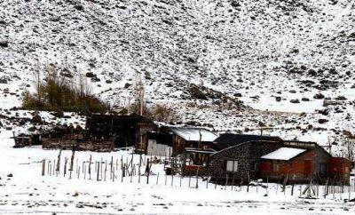 Neuqu�n declar� el �alerta m�xima� y en Chile evacuar�an al ganado