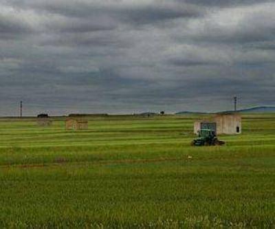 """Medio Ambiente y San Luis Agua """"no detectaron ninguna irregularidad"""" en los campos de Monsanto"""
