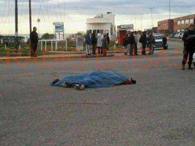 Solicitan el aporte de datos del conductor que atropelló y mató a un trabajador del INIDEP y que se encuentra prófugo