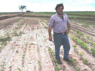 Salta no pidió a la Nación la emergencia por la sequía
