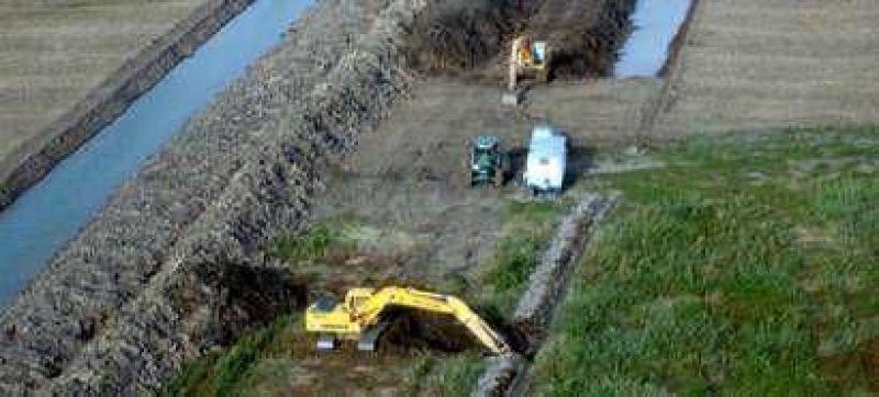 Dos amparos en la Justicia contra la siembra en islas de Victoria