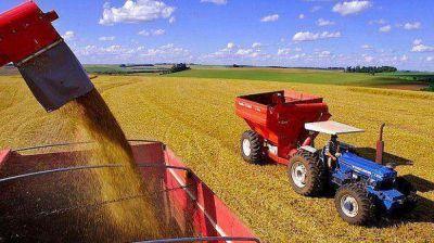 Los productores afirman que no tienen trigo para vender