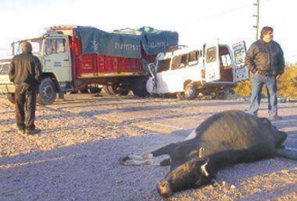 UATRE pedirá informes por el accidente de cosecheros