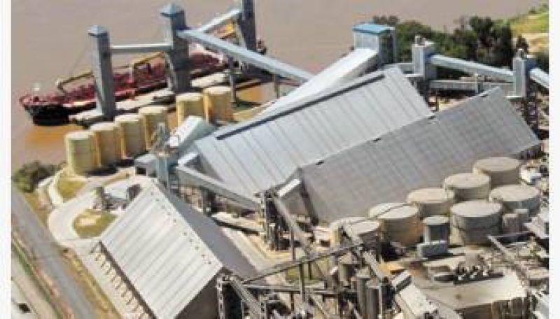 Conflicto gremial mantiene paralizado el mayor complejo cerealero del país