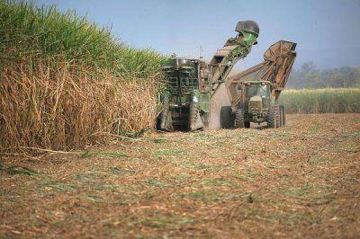 Ledesma sostiene que el Sindicato del Az�car quiere el conflicto