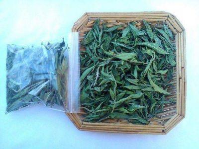 Vislumbran un gran potencial en la stevia jujeña